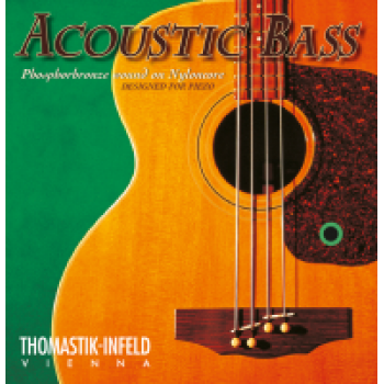 Acoustic - Bass